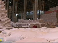 Gạo Việt có nhiều đơn hàng xuất khẩu mới cuối năm 2017, 2018