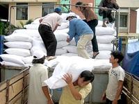 Thủ tướng chỉ đạo hỗ trợ gạo cho người dân bị thiệt hại do bão số 10