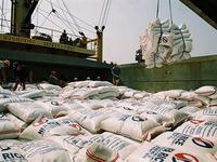 Việt Nam tham dự phiên đấu thầu nhập 250.000 tấn gạo của Philippines
