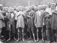 6 triệu người Do Thái thiệt mạng trong thảm họa diệt chủng của phát xít Đức