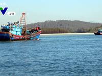 VASEP 'bắt tay' Cảnh sát biển chống đánh bắt thủy hải sản bất hợp pháp