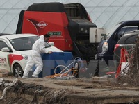 Hàn Quốc nâng cảnh báo dịch lở mồm long móng lên mức cao nhất