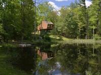 Ấn tượng nhà cây nằm 'gọn lỏn' giữa khung cảnh thiên nhiên thanh bình