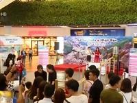 Lượng khách du lịch Việt Nam - Nhật Bản gia tăng nhanh chóng
