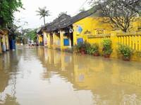Nga, Nhật hỗ trợ Việt Nam khắc phục hậu quả bão số 12