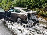 Tai nạn liên hoàn trên đường cao tốc chỉ vì... những con lươn
