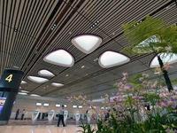 Trải nghiệm ở nhà ga 'không nhân viên' sân bay Changi, Singapore