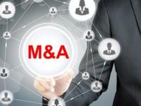 Đầu tư nước ngoài thúc đẩy hoạt động mua lại các startup Đông Nam Á