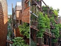 Ngôi nhà độc đáo với kiến trúc cây xanh tại Italy