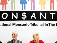 Phiên tòa giả tưởng kết tội Tập đoàn hóa chất Monsanto