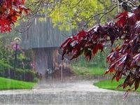 Chiêm ngưỡng vẻ đẹp quyến rũ của mưa Đà Lạt