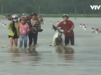 Mưa lũ ở Thừa Thiên - Huế: Nứt vỡ đê bao, 1.200 ha lúa ngập úng