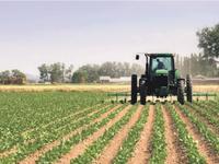 Thị trường nông nghiệp châu Âu có nguy cơ chao đảo vì Brexit