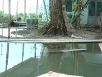Cần Thơ: Doanh nghiệp chặn cống thoát nước, hàng chục nhà dân bị ngập