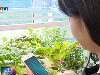 Ứng dụng công nghệ thông minh - Phần không thể thiếu trong phát triển nông nghiệp