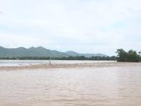 Mưa lũ gây ngập lụt tại Phú Thọ