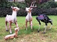 Trung Quốc ra mắt chó robot công nghệ cao