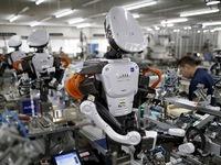 Anh: Giới doanh nghiệp lo ngại khó tồn tại vì robot