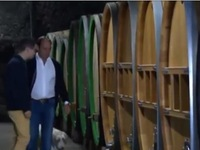 Tới thăm vùng sản xuất rượu vang Riesling nổi tiếng của Đức