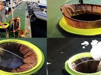 Robot dọn rác biển chính thức hoạt động tại Anh
