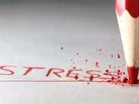 Stress nơi công sở - Vấn đề trong cuộc sống hiện đại