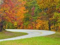 Xốn xang trước khung cảnh mùa thu tuyệt đẹp trên khắp thế giới