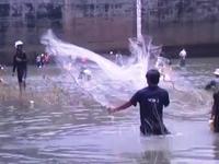 Người dân đổ xô bắt cá khi thủy điện đóng cửa xả