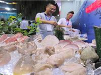 EU sẽ dừng nhập khẩu thủy sản nếu Việt Nam không tuân thủ quy định mới