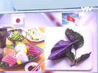 Lá tía tô Việt xuất khẩu sang Nhật và câu chuyện bắt tín hiệu thị trường