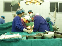 Số ca được ghép tạng tại Việt Nam đang tăng nhanh