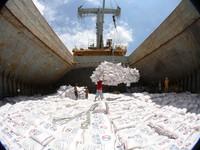 Nâng sản lượng gạo xuất khẩu năm 2017