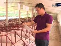 Đàm phán xuất khẩu thịt lợn sang Trung Quốc qua đường chính ngạch