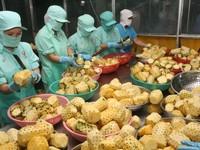 Xuất khẩu nông sản hướng tới đạt mục tiêu tăng trưởng 3,05