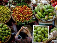 Agro-forestry-aquatic exports rise 9% in 11 months
