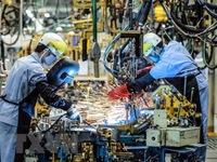 Vietnam tops the ASEAN manufacturing PMI