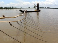 Mekong River's water levels rising