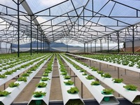 Digital agriculture the key to higher value farm produce