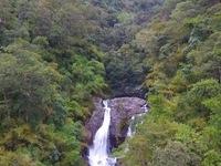 Ninh Thuận phát triển hệ thống thác kỳ vĩ trong rừng nguyên sinh