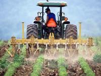 Thuế quan Trung Quốc tấn công nông dân Mỹ trên mọi góc độ