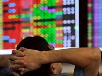 Quỹ đầu tư: Hiệu quả sụt giảm theo thị trường