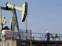 Căng thẳng giữa Mỹ và các đồng minh Vùng Vịnh quanh vấn đề dầu mỏ