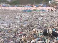 Thế giới thải ra 300 triệu tấn rác thải nhựa mỗi năm