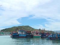 Hoạt động kém hiệu quả, ngư dân khó trả nợ vốn vay Nghị định 67