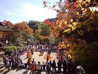 Sôi động lễ hội đá cầu tại Nara, Nhật Bản