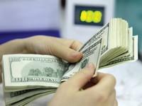"""Ngân hàng Nhà nước """"siết"""" cho vay USD"""
