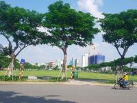 """Hủy kết quả đấu giá lô """"đất vàng"""", Đà Nẵng báo cáo Thủ tướng Chính Phủ"""