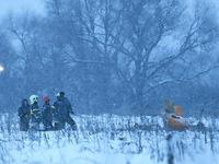 Nga tìm thấy hộp đen thứ 2 chiếc máy bay An-148 gặp nạn