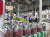Xuất khẩu rau quả tăng mạnh trong tháng 1/2018