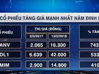 Đâu là các cổ phiếu 'hợp mệnh' nhất trong năm Đinh Dậu?