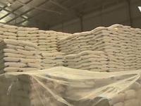 Hậu Giang kêu gọi giải cứu 30.000 tấn đường tồn kho